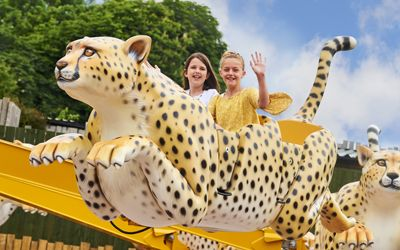 Best Zoo in South East & Sussex | Family Days Out