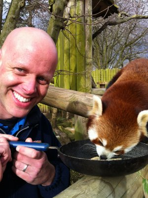 Mark Kenward with Red Panda Mulan at Drusillas Park_1.jpg