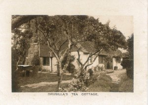 Tea_CottagheDrusillas_20150521_123346_001.jpg